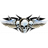 Winged skulls chrome